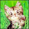 Аватар для Kesha777
